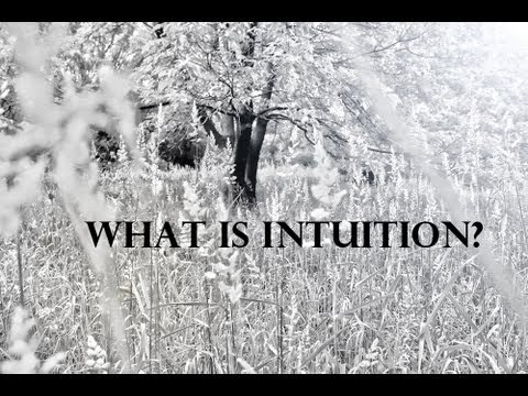 An Intro to Intuition