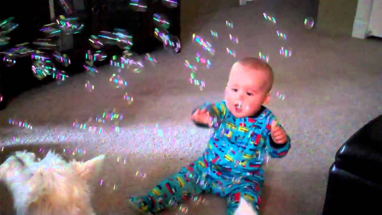 Baby And Dog Eating Bubbles Video