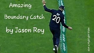 Jason Roy takes amazing Catch to dismiss Glenn Maxwell - twitter reaction - Australia vs England
