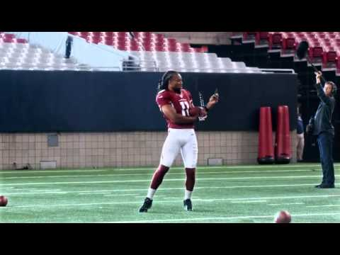 Larry Fitzgerald Visa Advert