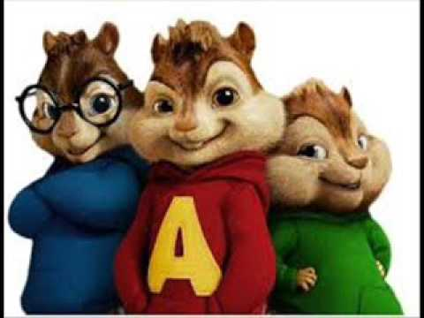 chipmunks 5odwa 5ir