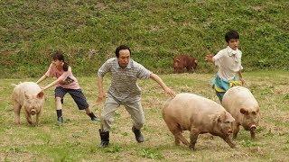 《生存家族》是由矢口史靖编剧并执导,小日向文世、深津绘里、时任三郎...