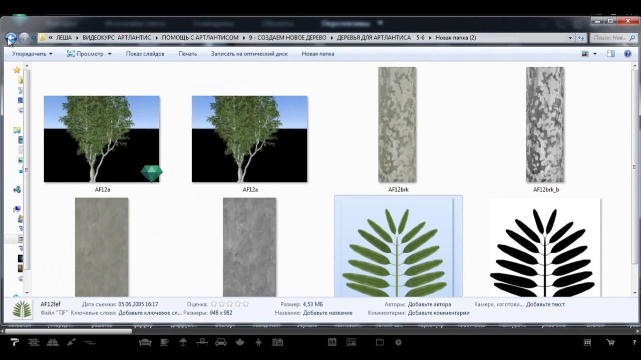 Как в архикаде сделать деревья 18