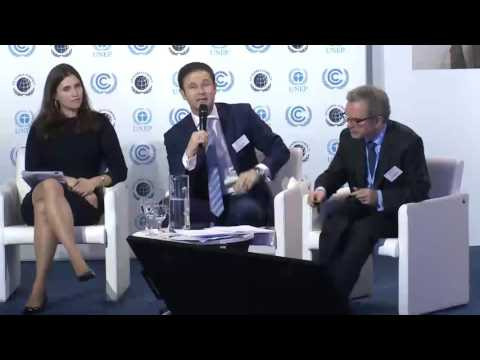 Caring for Climate Business Forum COP21 - Integrating Climate in the Investment Chain From...