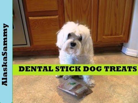 dental-sticks-for-dogs-from-dollar-tree--dental-dog-treats-review