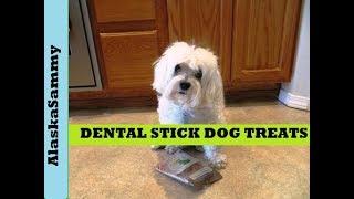 Dollar Tree Dental Stick Dog Treat Natural Value