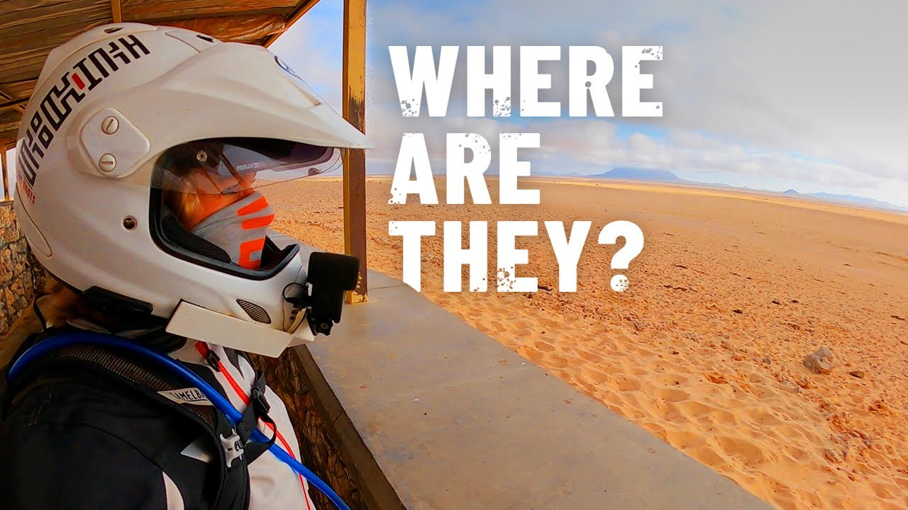 Download There are around 300 of them in Namibia! [S5 - Eps. 41]
