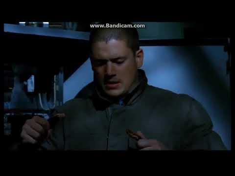 Prison Break 4.Season Final Scene