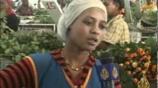 الاستثمار بمجال الزهور بإثيوبيا