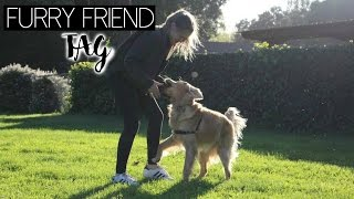 Furry Friend TAG w.  Luca