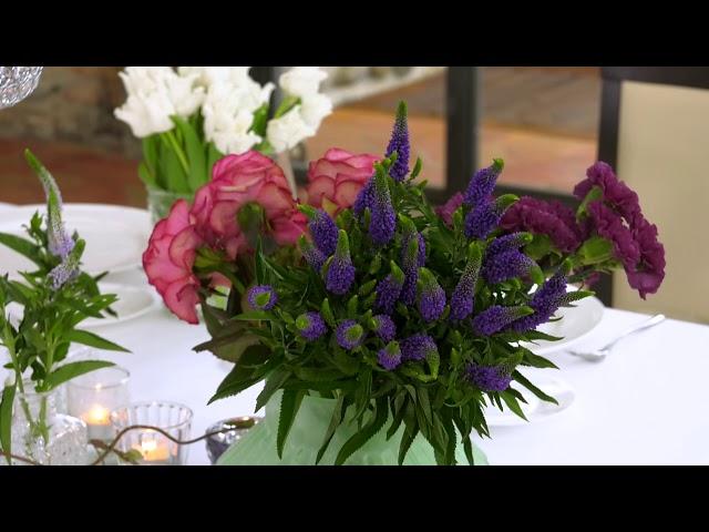 Flowers Mood - Sedicesima puntata