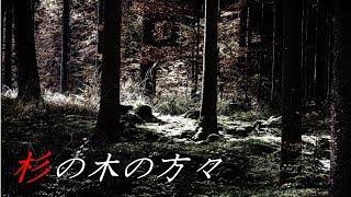 【怪談朗読】「川の源流部で釣り/真っ赤な大きい帽子の女/杉の木の方々」