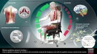 BIOSWING®: Entraîne le corps assis... sans aucun effort! (2014, français)