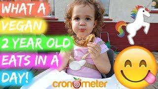 What My Vegan Toddler Eats In A Day  Cron O Meter Breakdown