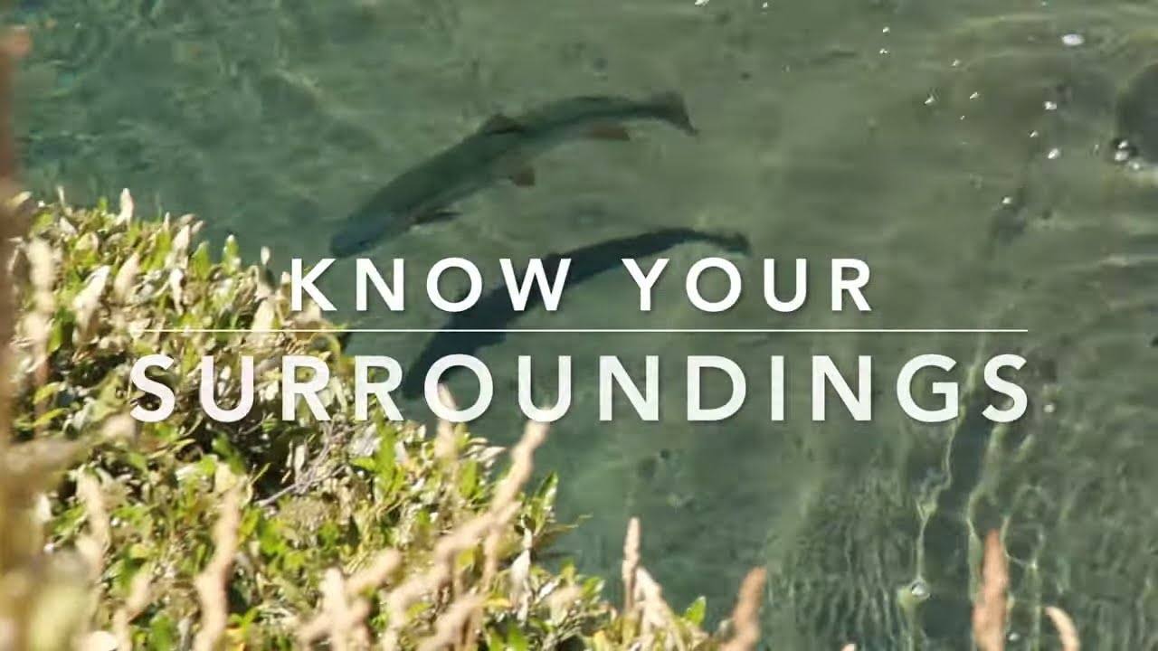 Fly Fishing Tip - Know Your Surroundings