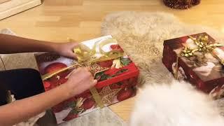 Обложка на видео о Мои подарки на Новый Год и мой новый силиконовый Реборн