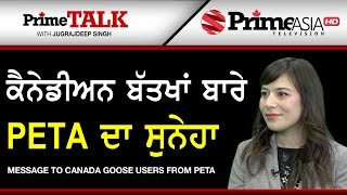 Prime Talk 240 || Message To Canada Goose Users From Peta