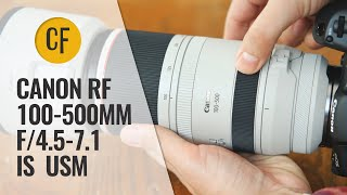 Canon Rf 100 500mm F 4 5 7 1 L Is Usm Lens Review With Samples Youtube