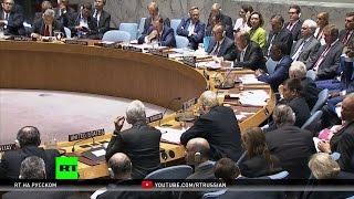Экс-сотрудник МИ-6: Бесполетная зона только ухудшит ситуацию в Сирии