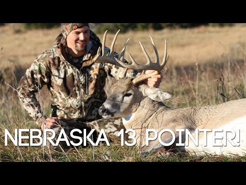 NEBRASKA 13 POINTER ON THE GROUND - #WiredToHuntWeekly 67