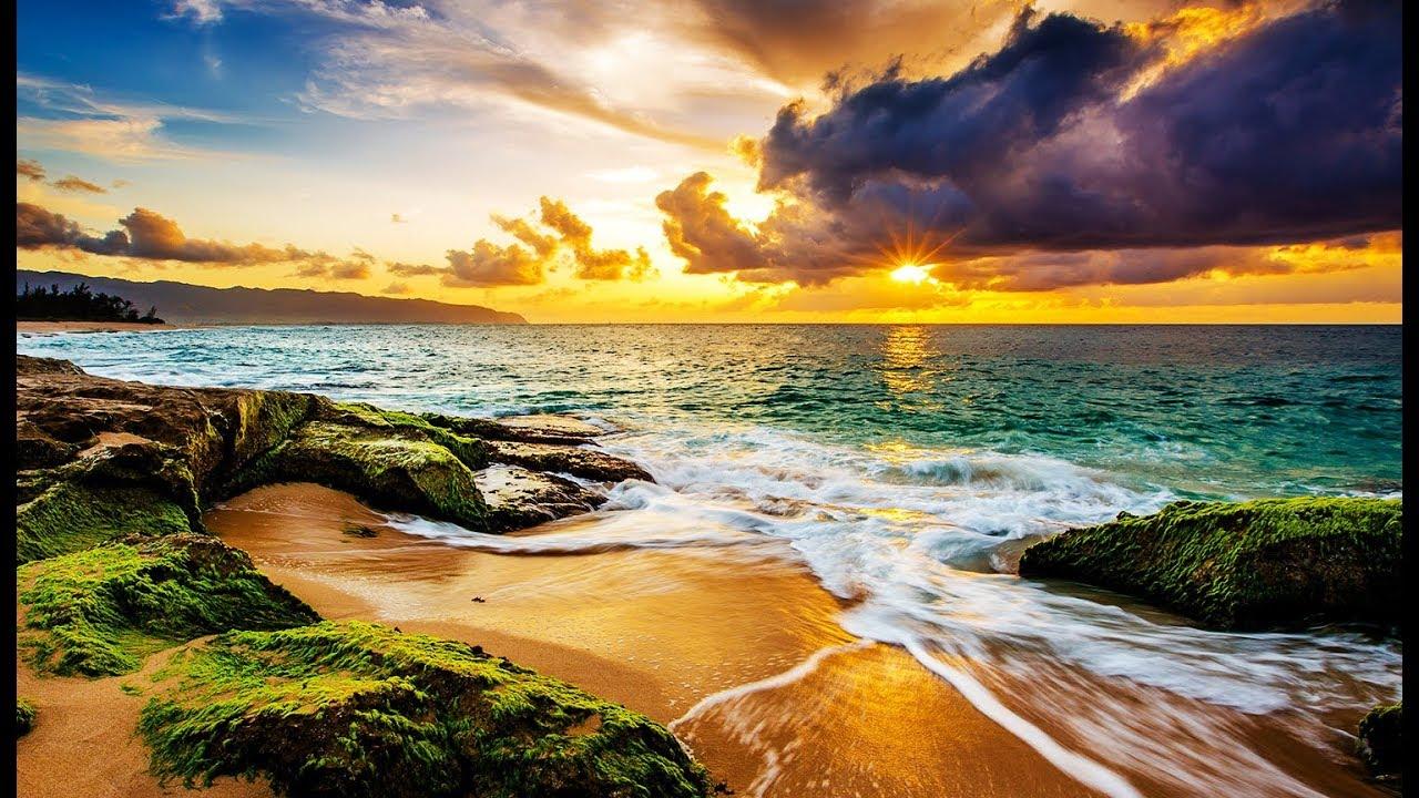 Hawaii Doku