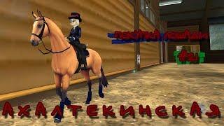 SSO   Покупка лошади   Ахалтекинская порода   #21