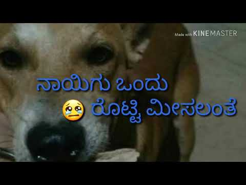 """Anatha Maguvadhe""  Kannada Lyrics  Song  Plzz West Food & Love Me Poor Children's"