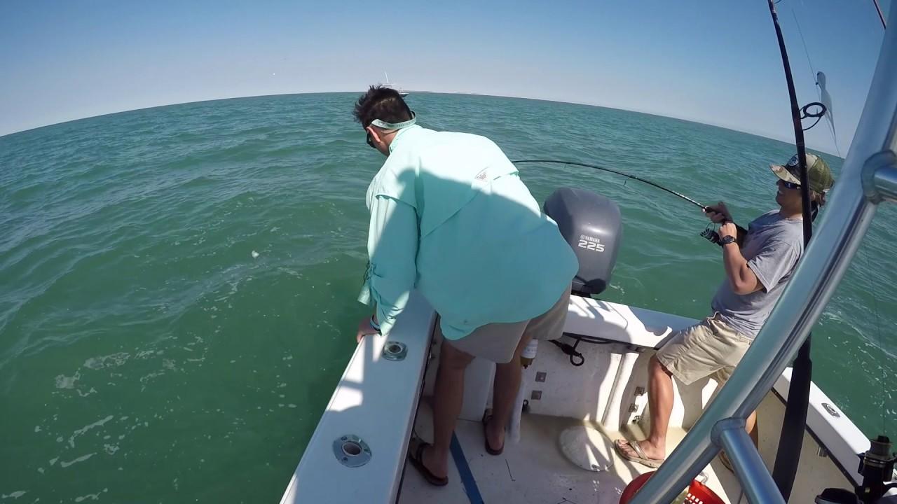 Bull red drum fishing cape lookout north carolina youtube for Cape lookout fishing report