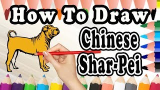 How To Draw A Chinese Shar Pei DOG | Draw Easy For Kids | Drawing step by step Chinese Shar Pei Dog