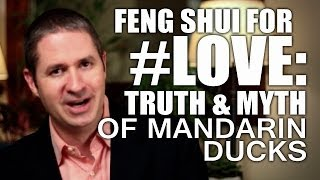 Feng Shui To Attract Love, Relationship & Marriage: Truth & Myth of Mandarin Ducks & Your Love Life