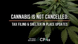 Cannabis is NOT Cancelled: Tax Filing & Shelter in Place Updates