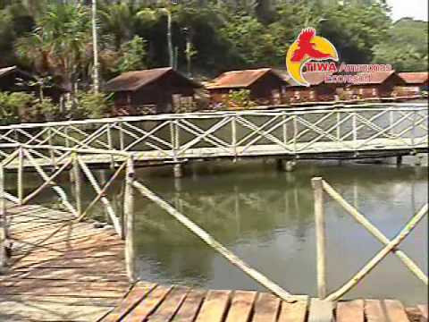 Hotel De Selva Amazonas