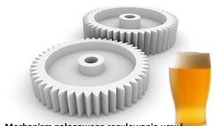 Mechanizm nałogowego regulowania uczuć w uzależnieniu od alkoholu