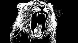 Unknow Artist - Schranz Animals