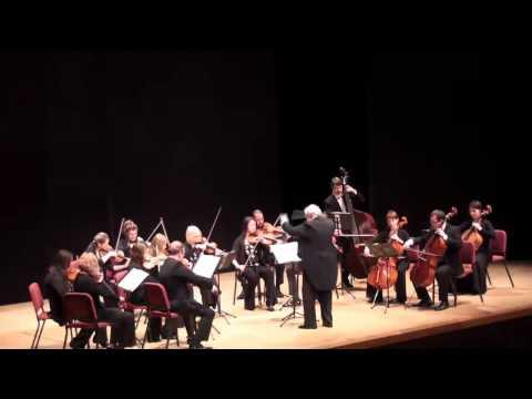 Chamber Orchestra Kremlin/Rachlevsky Bekmambetov