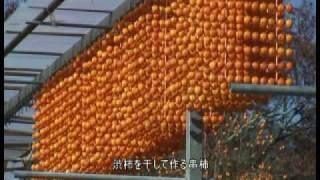 四郷 串柿まつり