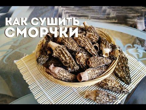 Детям про грибы съедобные и ядовитые с названиями и описаниями