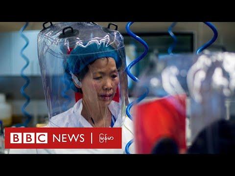 ဝူဟန်ဓာတ်ခွဲခန်းက တရုတ်သုတေသီရဲ့ ပြောကြားချက် ဘီဘီစီ အထူးသတင်းလွှာ - BBC News မြန်မာ