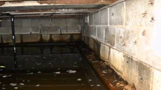 Are Dirt, Vented Crawl Spaces a Health Hazard? | Ask the Expert