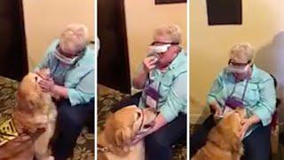 盲目の女性、特殊なメガネを使用してずっと誘導してくれている盲導犬を見た時の反応
