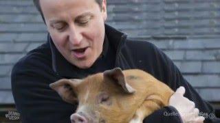 Ein Lied für David Cameron