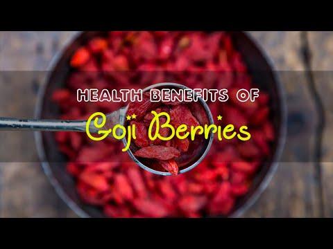 Top 5 Health Benefits of Goji Berries