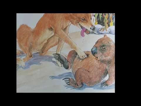 Wombat Stew Trailer
