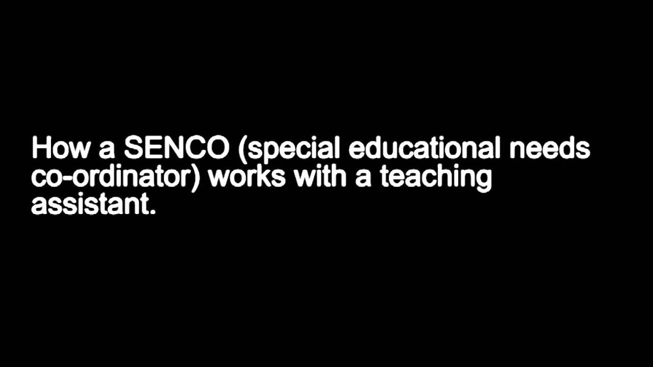 how a senco works a teaching assistant how a senco works a teaching assistant