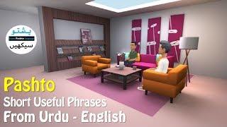 Lesson 81 - Pashto Common Sentences | Learn English from Pashto | Pashto Plotagon Series | Pk Pashto