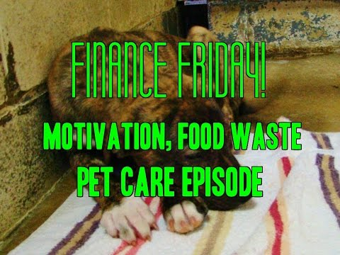 Finance Friday! Affording pets, food waste and motivation -$20,569