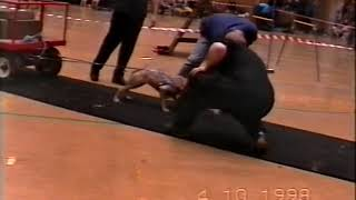 Weight Pull 1998 Dutchess Irish Stafford
