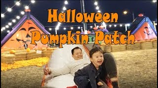 Halloween Pumpkin Patch | Pumpkin Picking | Best Pumpkin Farm Near Me