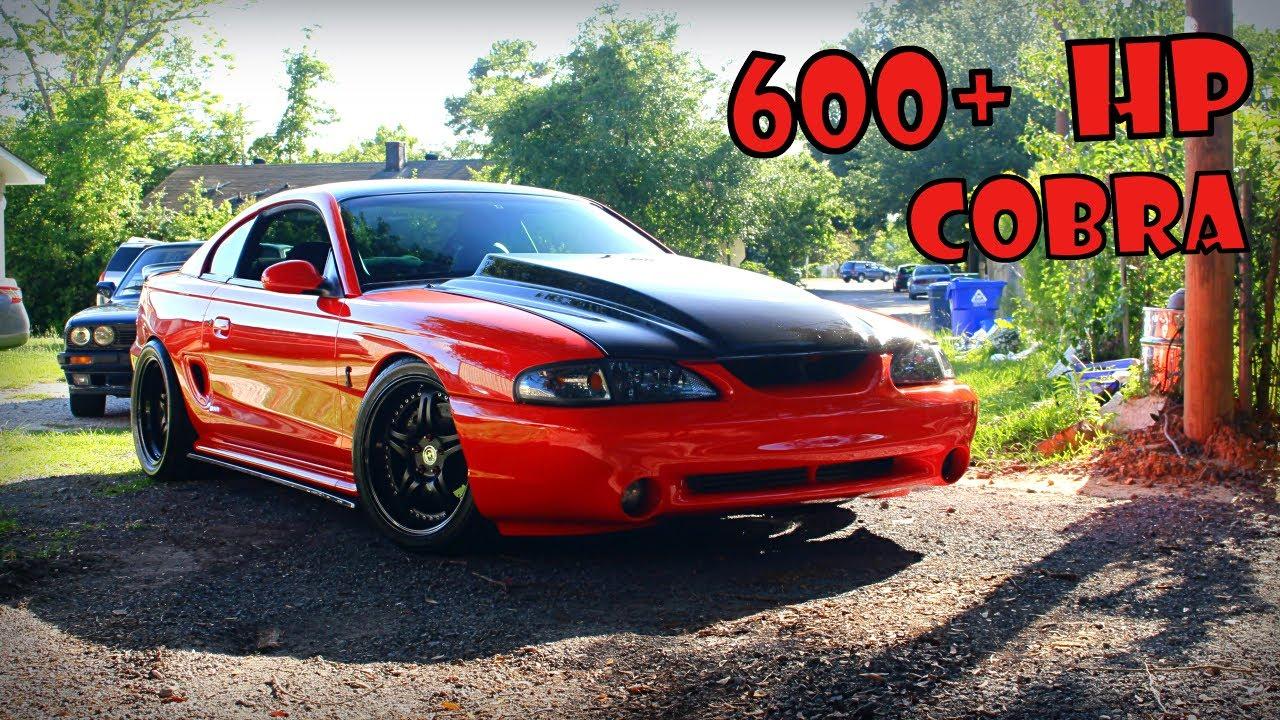 600 Hp 98 Cobra Svt