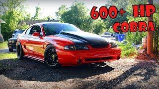 600+hp 98 Cobra SVT
